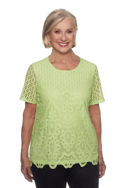 Image: Petite Allover Lace Top